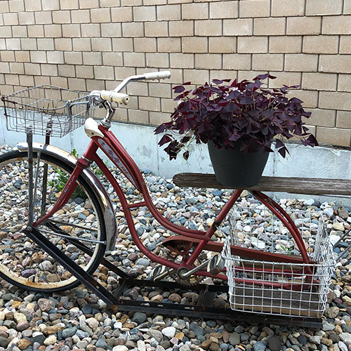 Customized Bicycle